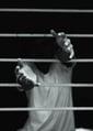 social services incarceration hands